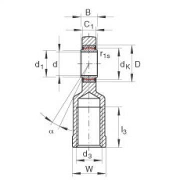 FAG Cabeças articuladas - GIL10-UK