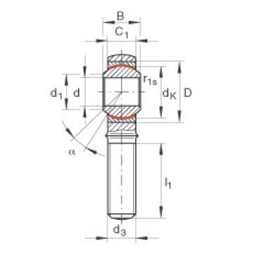 FAG Cabeças articuladas - GAKL10-PW