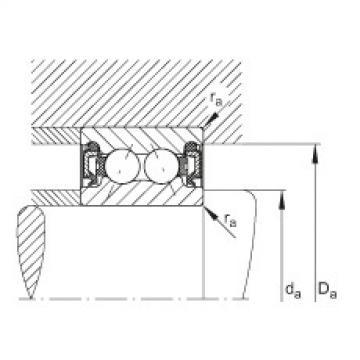 FAG Rolamento angular - 3801-B-2RZ-TVH