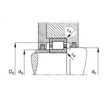 FAG Rolamento de rolos cilíndricos - NJ411-XL-M1 + HJ411