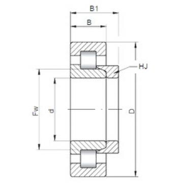 Rolamento NH1038 ISO