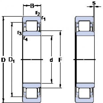 Rolando NU 313 ECM SKF