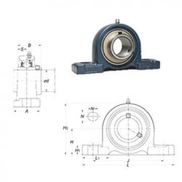 Rolando UCP320-64 FYH